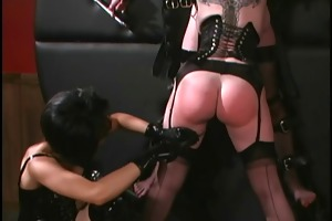randy harlots getting dominated by cute diva
